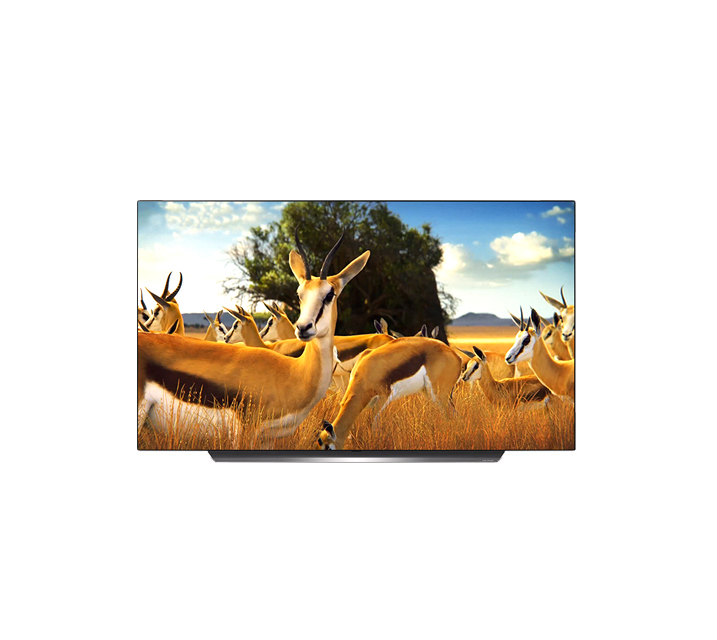 [렌탈] LG 올레드 TV AI ThinQ 55인치 OLED55B9C / 월49,900원